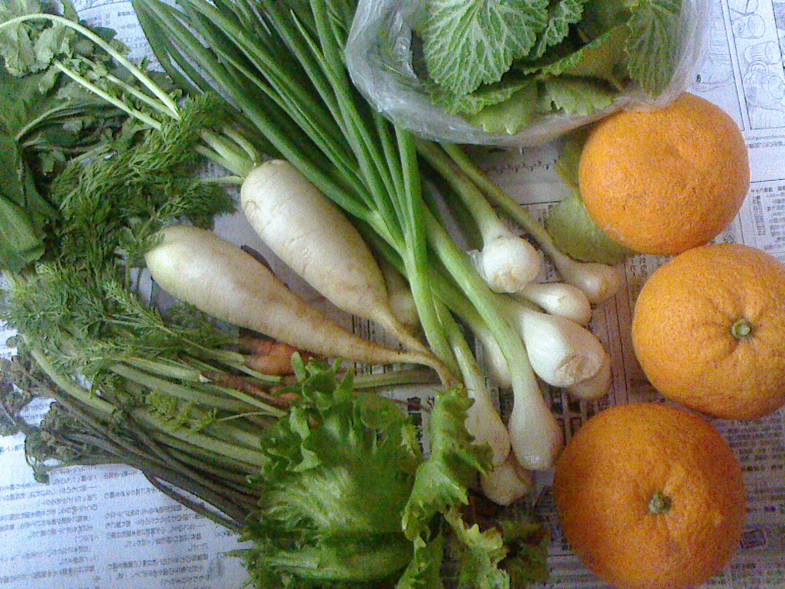 成瀬農園野菜セット