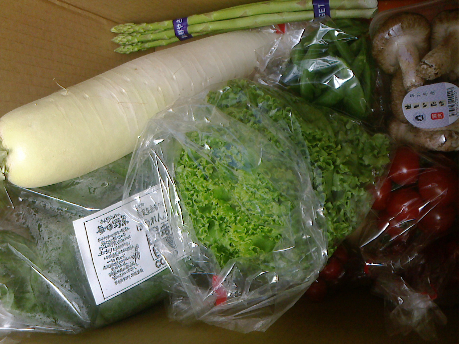 本日の野菜セット4月26日