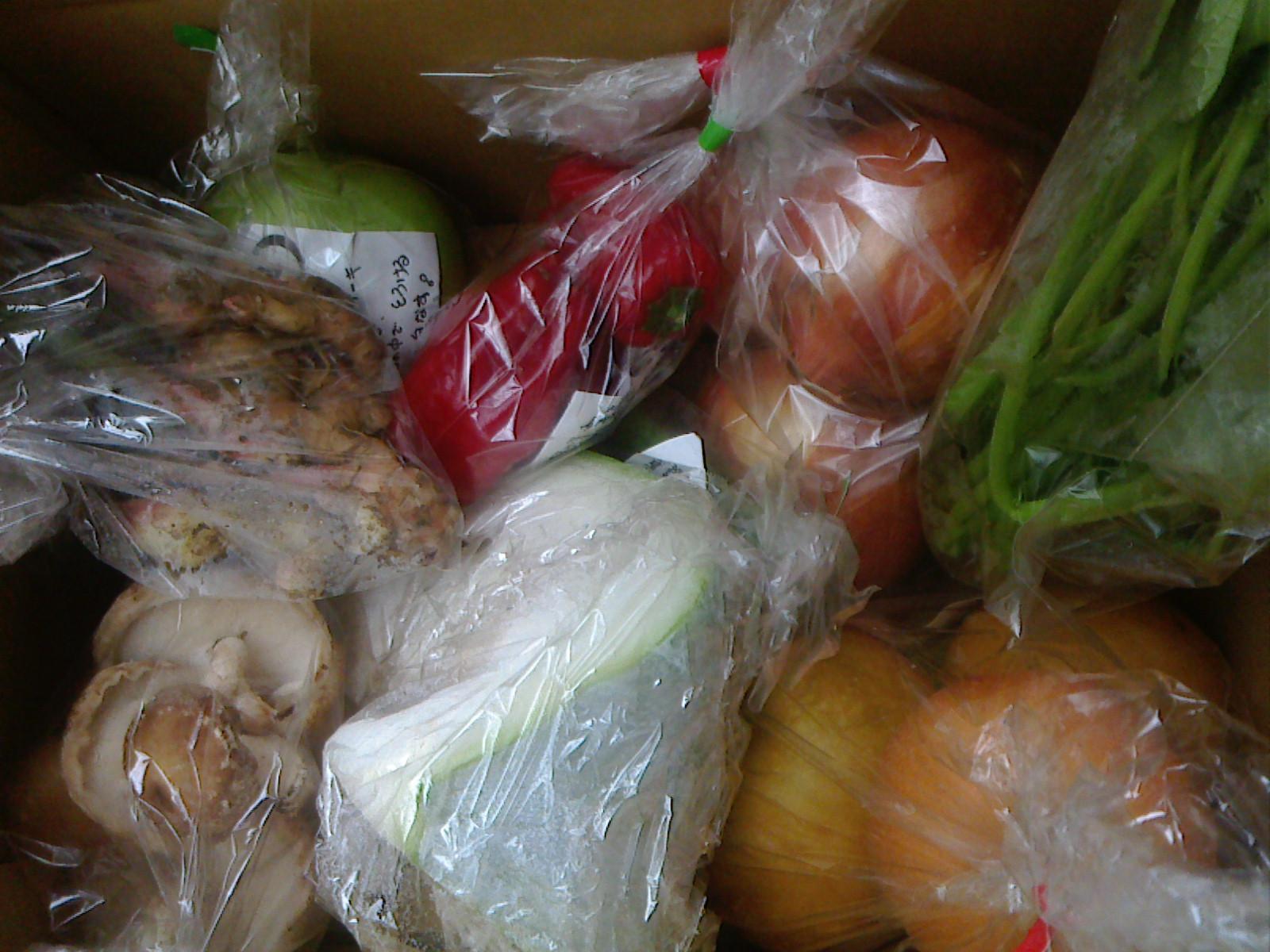 本日の野菜セット9月20日