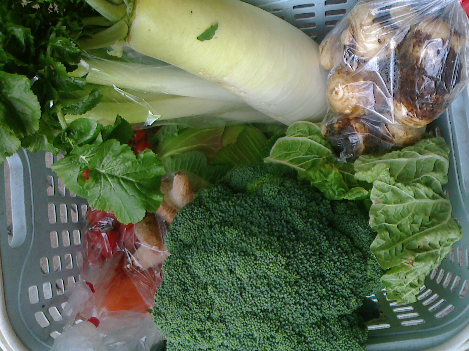 本日の野菜セット